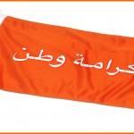 """صور + فيديو: """"مسيرة كرامة وطن 8"""" تحت شعار (الشعب يريد تطهير القضاء) وهجوم  القوات الخاصة عليها 6-7-2014"""