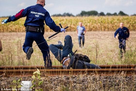 2C13557600000578-3226888-Head_over_heels_A_migrant_falls_face_first_between_railway_track-a-4_1441747847609